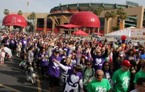 ACC Raises $50,000 for American Heart Association at Heart Walk 2017 Galley